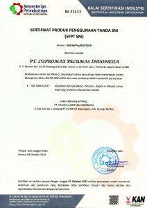 SPPT-SNI-7069-6-1